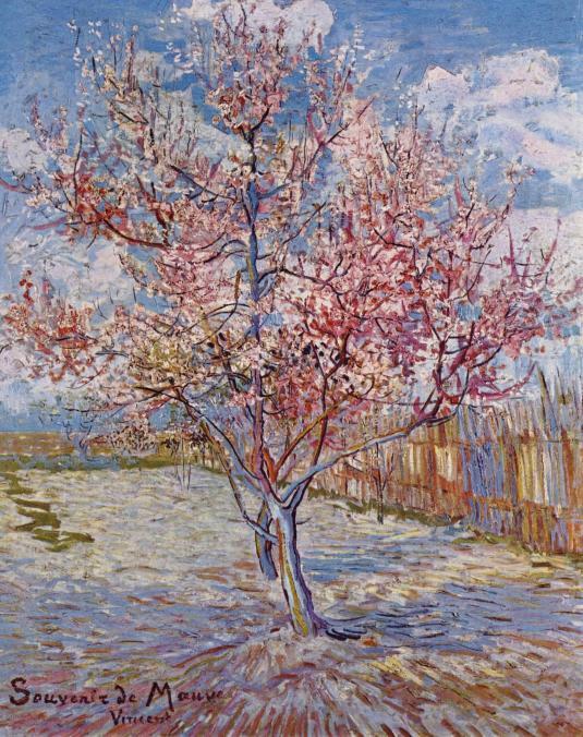 Nome:   Vincent_Willem_van_Gogh_113.jpg Visite:  41 Grandezza:  100.7 KB