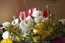 Nome:   fiori compl.jpg Visite:  625 Grandezza:  10.0 KB