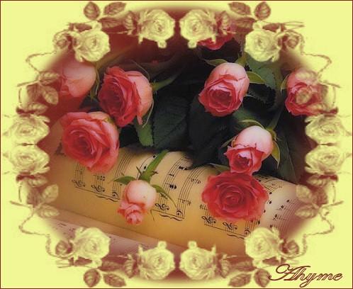 Nome:   201211176222_fiori-1.jpg Visite:  4167 Grandezza:  77.8 KB