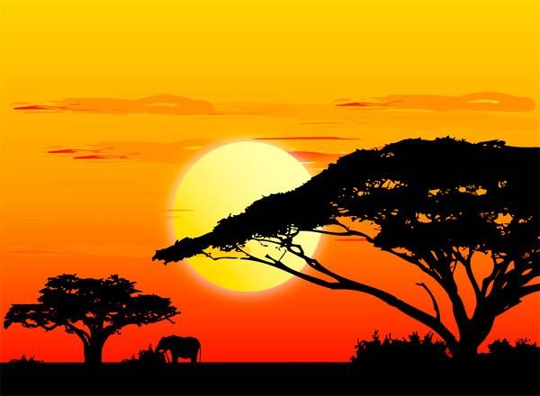 Nome:   africa.jpg Visite:  1367 Grandezza:  46.7 KB