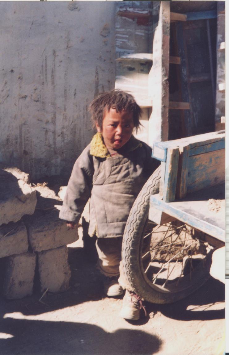 Nome:   tibet 1-a.jpg Visite:  552 Grandezza:  90.2 KB